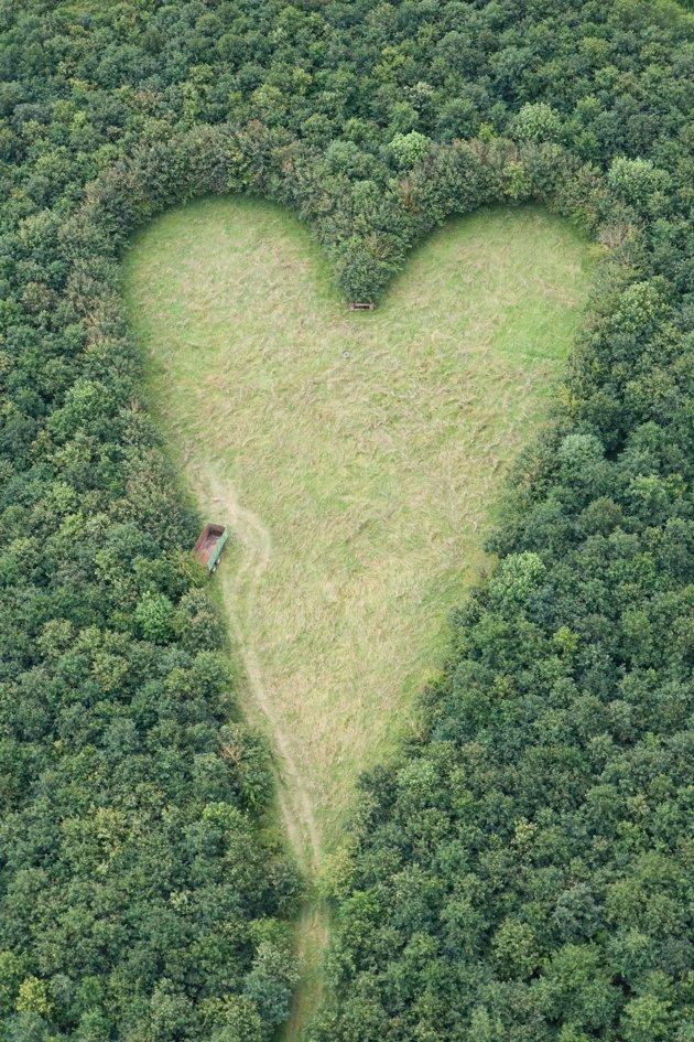 A Heart-Shaped Meadow