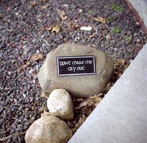 4_dont-let-the-rocks-cry-out